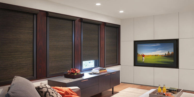 Alban Roller Shades